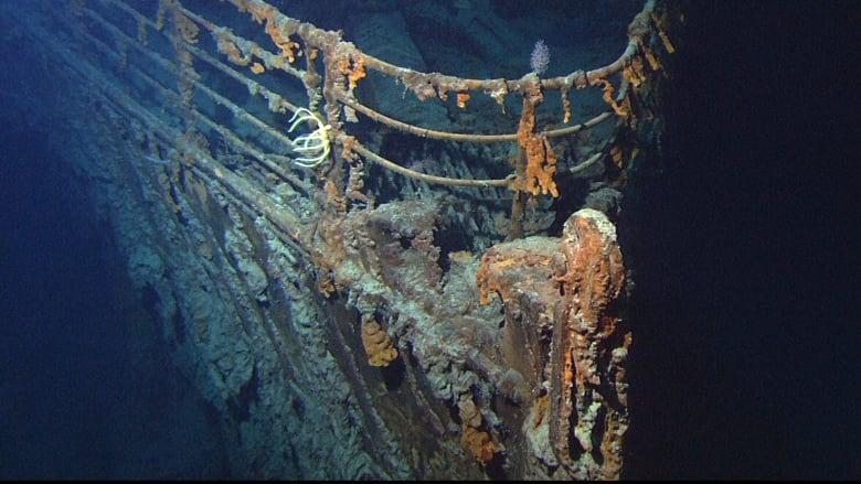 $140K Titanic submarine tours off Newfoundland coast 'not a luxury