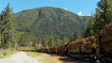 Woss logging train
