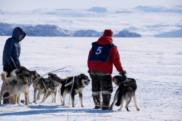 Bib 5 Nunavut Quest