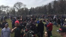 420 crowd