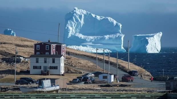iceberg nl