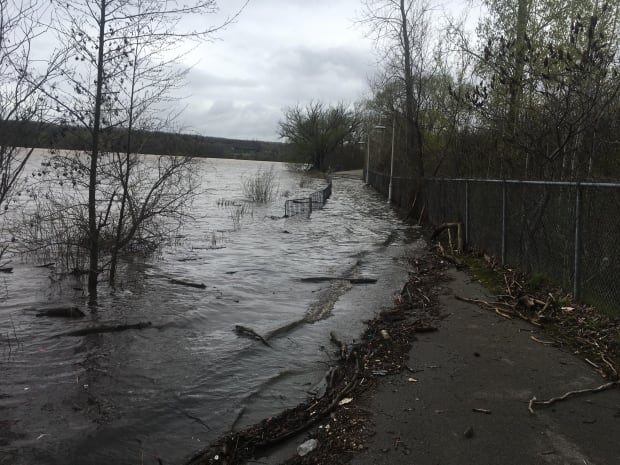 Hamilton's Waterfront Trail flood