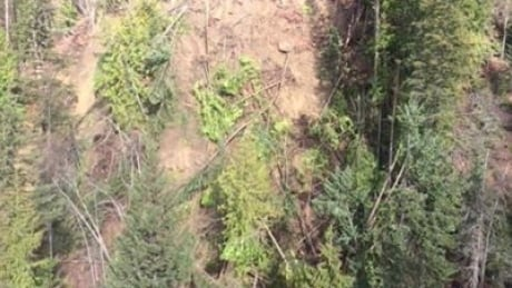 Kaslo landslide