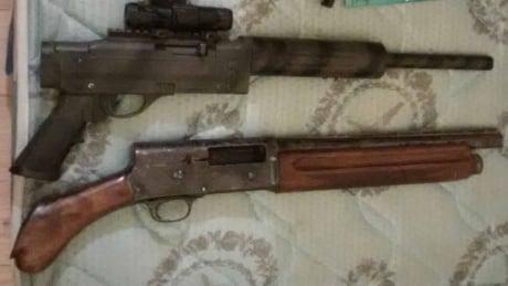 Windsor police guns