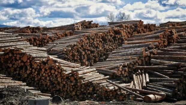Quesnel lumber mill