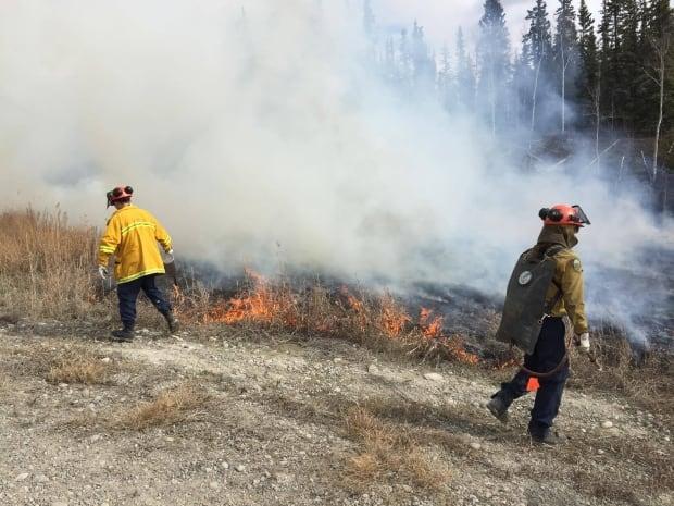 Wildfire control