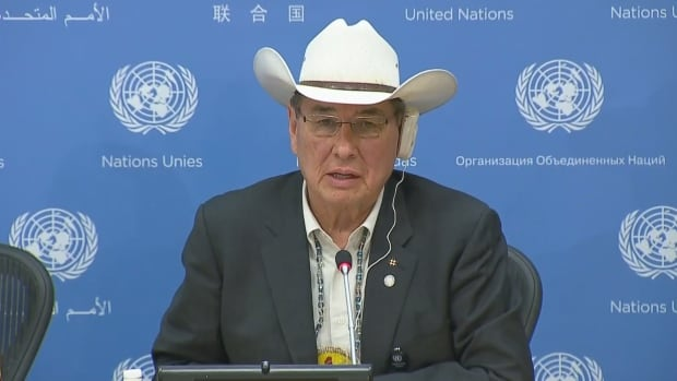 Wilton Littlechild speaks to reporters at UN headquarters in New York City, where the 10th anniversary of the United Nations Declaration on the Rights of Indigenous Peoples is being marked this week.