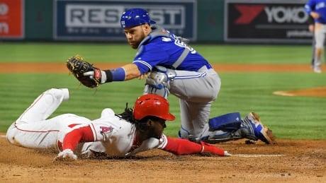 Blue Jays Angels Baseball