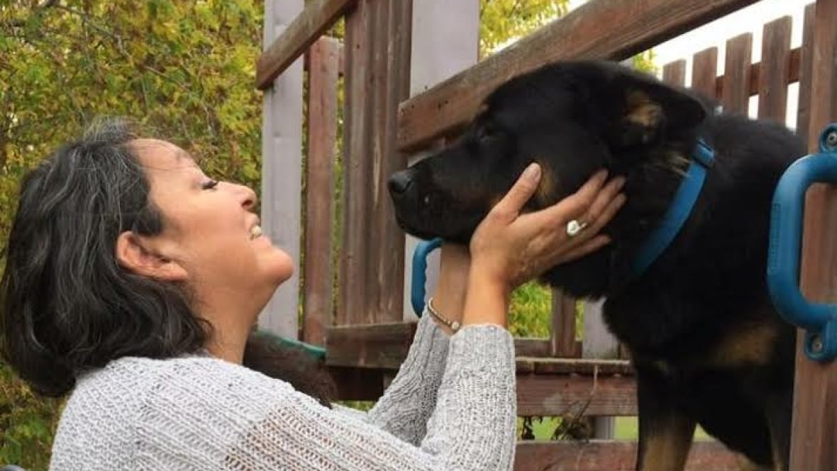 Woman pleads with missing dog's new owners for his return