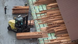 Canada determined to fight back as softwood lumber duties begin anew