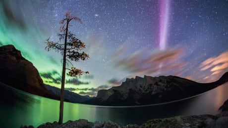 Meet Steve, the curious ribbon of purplish light discovered in Alberta skies