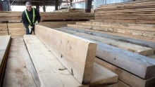 Softwood Lumber Business 20170425