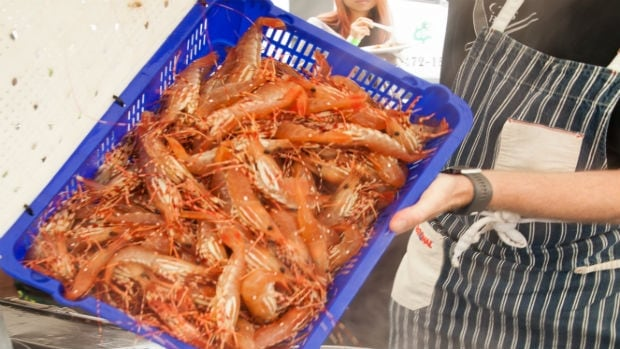 Local spot prawns