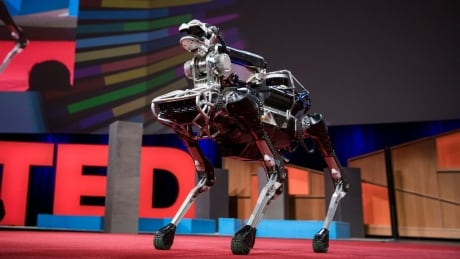 Robots rising: How far do we want them to go?