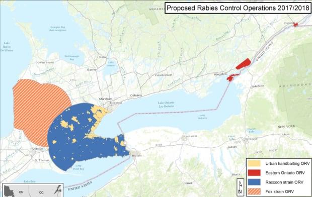 Rabies bait map