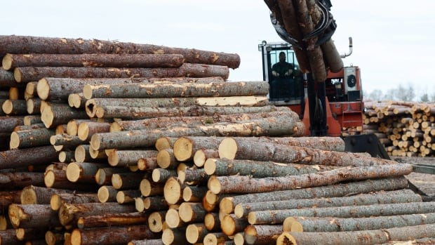 NAFTA renegotiations won't be completed quickly, says former ambassador to the U.S. Raymond Chrétien, which provides an incentive for the Trump administration to complete a deal with Canada on softwood lumber.