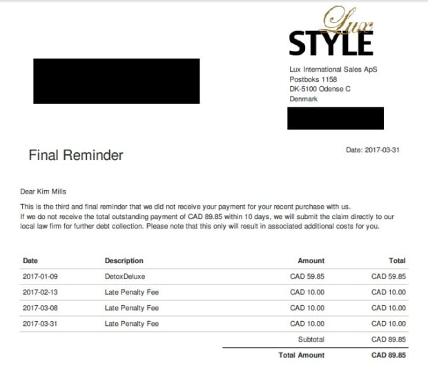 Kim Mills invoice from LuxStyle