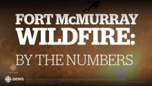 Fort McMurray wildfire: By the numbers