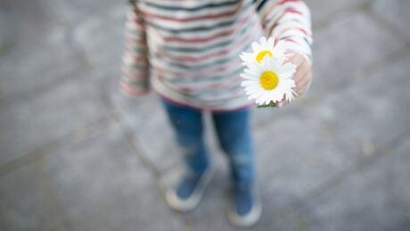 Child offering flower