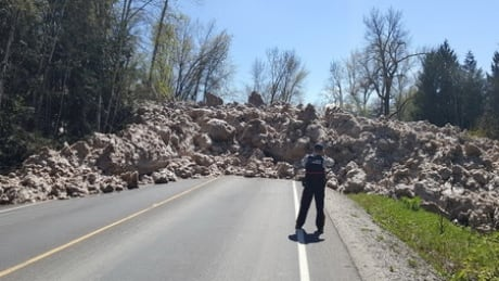 Avalanche Airport Road
