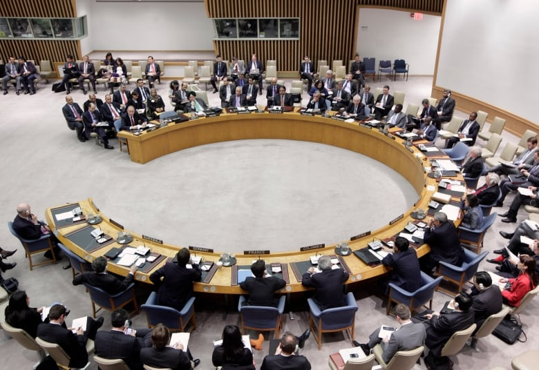 Canada is competing against Ireland and Norway for two available seats around the UN Security Council table.(Chip East/Reuters)