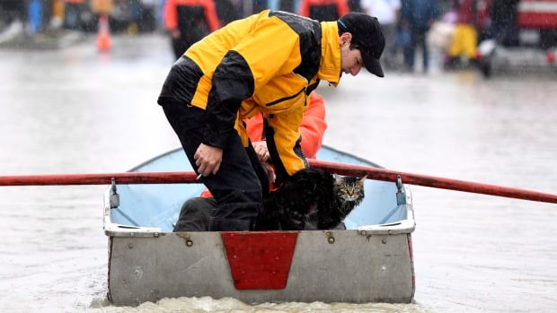 Erick Miner comforts a cat rescued by boat from a home Saturday on Rue Saint-Louis in Gatineau, Que., as rising river levels and heavy rains continue to cause flooding.