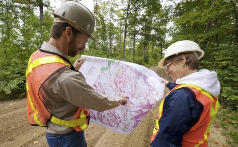 Forest sector losing jobs — but desperately needs more