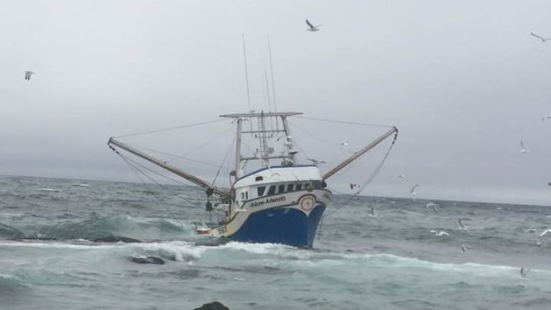 5 fishermen plucked from stuck boat in st pierre cbc news for Head boat fishing near me