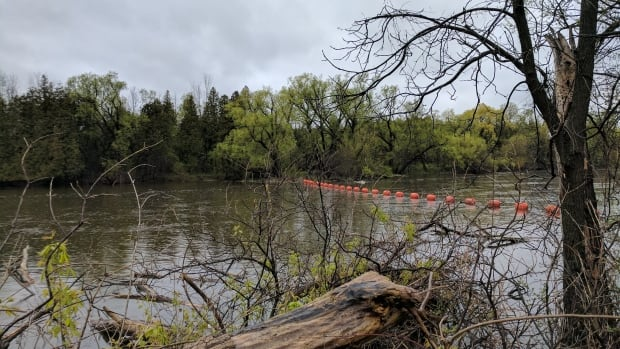 This is the river off the Hespeler Mill Pond. GRCA and Woolwich Township will hold a public meeting to discuss future improvements following the flood on June.