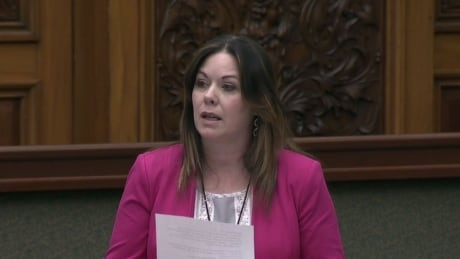 Windsor West MPP blasts province for denying city homelessness funding request thumbnail