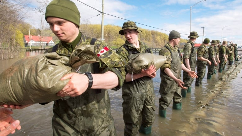 Canada's army looks to recruit reservists in face of dwindling