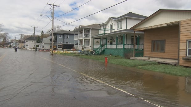Should you rebuild? Retired insurance adjuster, Ted Beauparleur says if your home is a total write-off you may want to rethink rebuilding in the flood zone.