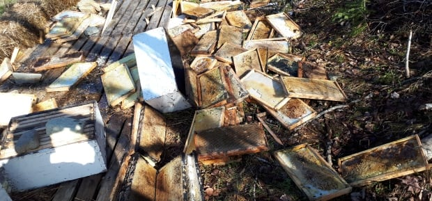 bee hives destroyed