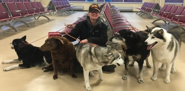 Joy Williams mud lake flooding dogs