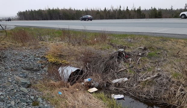 Outer Ring Road trash May 2017