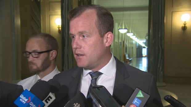 Former interim leader of the Saskatchewan NDP announced on Wednesday he will seek leadership of the party.