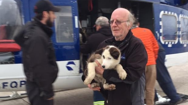 Dogs had to be rescued via helicopter from Mud Lake, as flooding continued in the Labrador community.