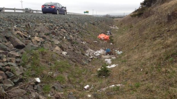 Garbage on the side of the Outer Ring Road in St. John's is a recurring problem every year.