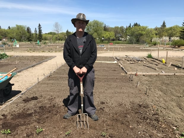 Growing strong tips and tricks for beginner gardeners in for Canadian gardening tips