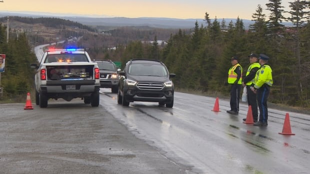 The Royal Newfoundland Constabulary, RCMP and the Liquor Corporation set up a checkpoint near Bay Bulls on Friday.