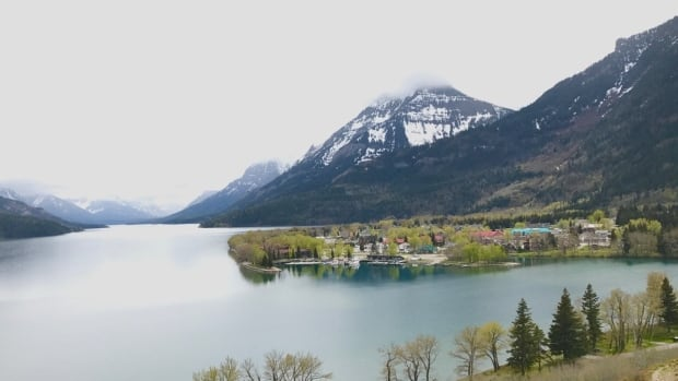 A huge deluge of guests pushed Waterton Lakes National Park in southern Alberta to temporarily turn away new visitors on Aug. 6, for a little under two hours.