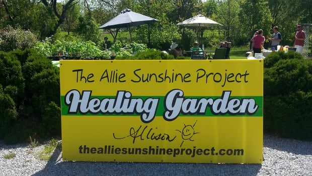 The Allie Sunshine Project in Lakeshore gives away free seedlings every year in honour of Alison Hayes, who died of Leukemia in 2015.