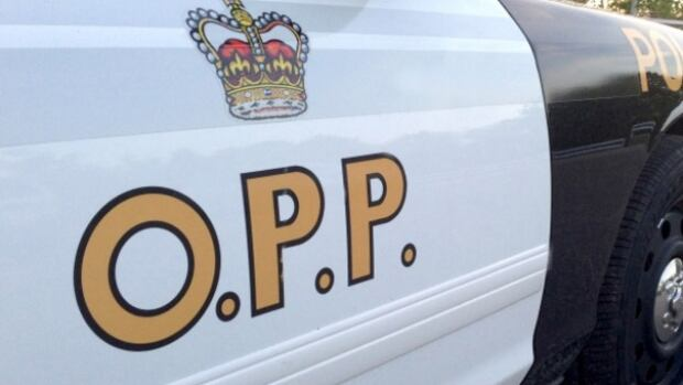 OPP say a 19-year-old has been charged after a gathering north of Thunder Bay.
