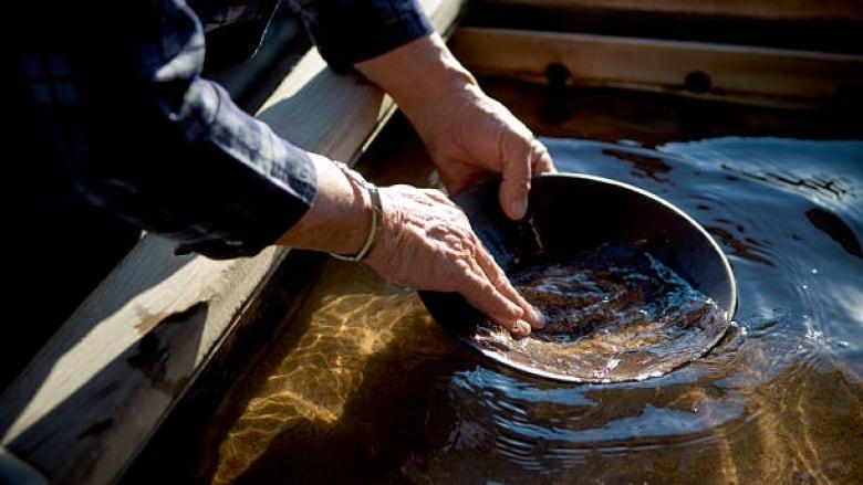 Panning for gold in Edmonton's North Saskatchewan River