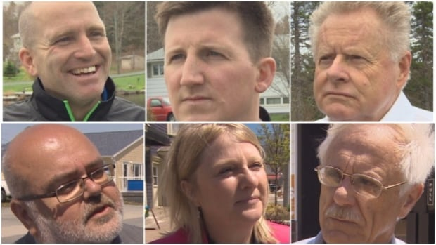 Nova Scotia parties search for undecided voters in campaign's last weekend
