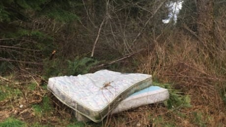 Powell River uses smartphones to battle illegal dumpers