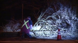 Thousands across B.C. lose power overnight after high winds