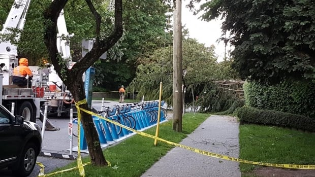 Strong winds cause multiple power blackouts across BC