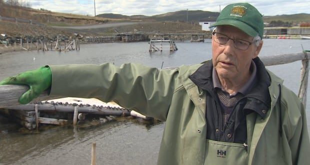 Clarence Marsh, fisherman, North Harbour, Placentia Bay