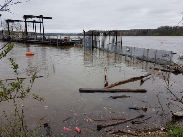 Carp barrier